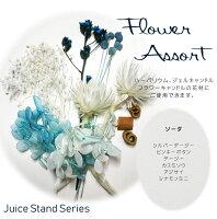 ハーバリウム 花材 /ジューススタンドシリーズ/フラワーアソート(ドライ、プリザ混合)/ハーバリウム、ジェルキャンドル、フラワーキャンドルカレイドフレームの花材にご使用いただけます/ドライフラワー/ハーバリウム花材のみの販売です/スマートレターにて発送