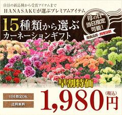 母の日 花 早割 送料無料 カーネーション 15種類から選べる【楽天ランキング1位獲得】花鉢 …