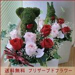 モスアニマル【ウサギさんL】
