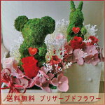 【送料無料】モスアニマル【クマさん】【パールボックスM】