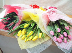 チューリップの花束春の花10本約30cm