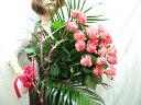 バラ 花束 20本 女性の誕生日にバラ花束 薔薇をプレゼント 本州は 送料無料