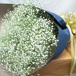 かすみ草花束