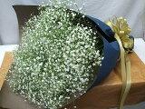 花束かすみ草
