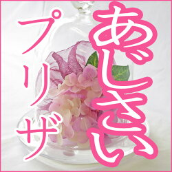 プリザーブドフラワー/アジサイ/誕生日/フラワーアレンジメント/本州は送料無料