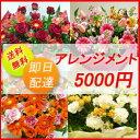【花】送料、即日発送 フラワーコンシェルジュが厳選した花屋の...