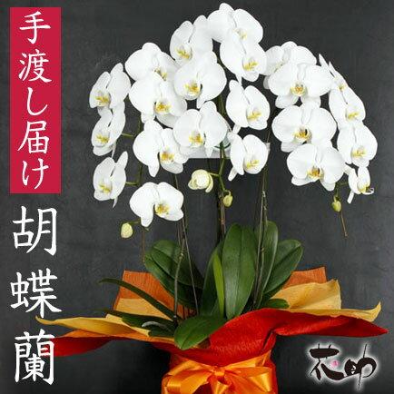 送料無料 就任祝い 開店祝いお祝いフラワーギフト フラワーコンシェルジュが厳選した花屋の胡蝶...