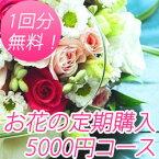 花の定期購入 1回5000円相当の御祝い花 1年間 Sコース 送料無料 【あす楽】【楽ギフ_メッセ入力】【楽ギフ_包装】