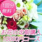 送料無料! 花の定期購入 1回10000円相当の御祝い花 1年間 Lコース 【あす楽】【楽ギフ_メッセ入力】【楽ギフ_包装】