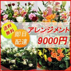 フラワーコンシェルジュが厳選した花屋のお祝いアレンジメント花 9000円 【...