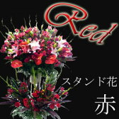 【花】開店祝い、開業祝いなどのお祝いに最適。風水で選ぶギフト 決断、勝負、仕事運アップ フラワーコンシェルジュが厳選した花屋のお祝いスタンド 赤系2段 20000円【楽ギフ_メッセ入力】