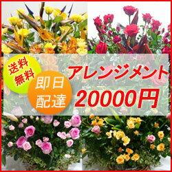 フラワーコンシェルジュが厳選した花屋のお祝いアレンジメント花 20000円 ...