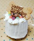 可愛くてギフトで大人気の小型犬用プチサイズケーキ
