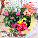 季節のおまかせ花鉢とグリーンの寄せ入れLサイズ◎フラワーバス