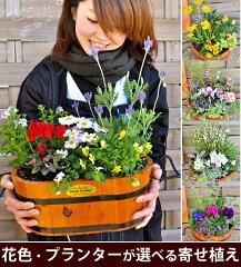 季節のおまかせカントリーガーデン〜旬のお花をたっぷり寄せ植え!
