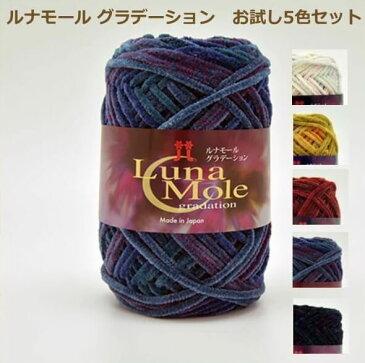 毛糸 ルナモールグラデーション お試し5色セット ハマナカ 手編み糸 手あみ糸 手芸の山久