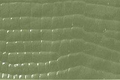 キラキラ感が素敵なワニ柄レザー生地 ワニ革 合皮 エナメル やなぎ色 [ENW-15]
