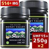 あす楽対応[マヌカハニー][アクティブマヌカハニーUMF 15+ 250g MGO514〜828相当]★2個セット天然蜂蜜/はちみつハニーバレー(100% Pure New Zealand Honey)[HLS_DU][RCP]