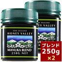 【 マヌカハニー *ブレンド250g】★2個セットニュージーランド生蜂蜜ハチミツはちみつハニーバレー(100% Pure New Zealand Honey)社マヌカ【HLS_DU】【RCP】
