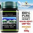 【マヌカハニー】【アクティブ マヌカハニー UMF 10+ *500g】★無農薬・無添加ニュージーランド天然蜂蜜/はちみつ/ハチミツハニーバレー社(100% Pure New Zealand Honey)社 マヌカ【HLS_DU】【RCP】