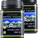 【マヌカハニー】【アクティブ マヌカハニーUMF5+ 500g MGO83〜262相当】2個セット 無農薬・無添加ニュージーランド天然蜂蜜/はちみつハニーバレー(100% Pure New Zealand Honey) 【HLS_DU】【RCP】