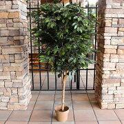 人工観葉植物フィカスベンジャミン約176cm18908(9047930)