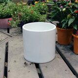 陶器鉢 植木鉢 ホワイトポット丸型 Lサイズ 直径18cm×高さ18cm