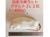 国産 高品質 冷凍ラット アダルト3L 2匹 爬虫類 猛禽類 肉食魚 哺乳類 ヘビ トカゲ ハリネズミ