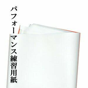 わけあり大きな練習用紙サイズ:約1m×4m入数:20枚
