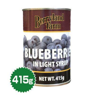 ブルーベリー 4号缶(415g)