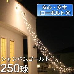 安心・安全ローボルトイルミネーション! 垂らして飾るカーテンライト♪【ローボルトLEDイルミ...