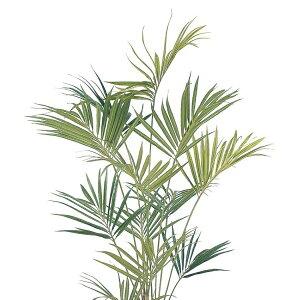 【人工植物】グリーンデコ鉢付ニューケンチャヤシ2.1m