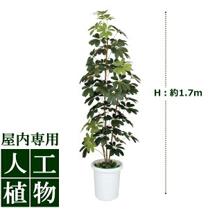【人工植物】グリーンデコミニシェフレラ1.7m
