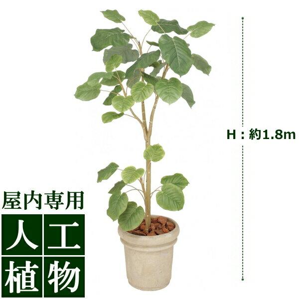 /人工植物/グリーンデコ ウンベラータ 1.8m/送料無料/RCP/05P03Dec16/【HLS_DU】