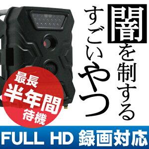 【防水 赤外線】すごい 防犯カメラ 動体検知&電池式 SDカード録画 高画質 ハイビジョン【監…