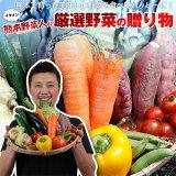 野菜セット 送料無料 気まぐれ野菜増量中! イケメン野菜セット 野菜12種+熊本県産 名物!パプリカおまけ付!