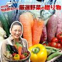 野菜セット 送料無料 気まぐれ野菜増量中! べっぴん野菜セッ...