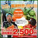 野菜セット 送料無料 気まぐれ野菜増量中!もっこす野菜セット 野菜7種+熊本県産 名物!ミニパプリカのおまけ付!