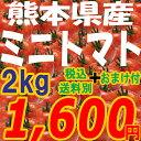 ミニトマト【ピュアチェリー/チカ2品種混合2kg+おまけ付♪】九州/野菜/熊本/新鮮/安全