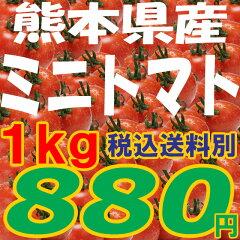 ミニトマト【ピュアチェリー/チカ2品種混合 1kg】ミニトマト【ピュアチェリー/チカ2品種混合 ...