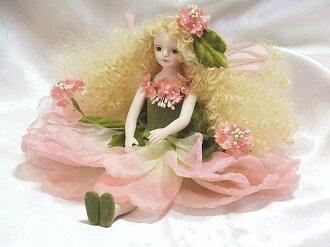 Wakatsuki 馬林孩子花仙子娃娃 ! elfinflory: 蕾絲花 (粉紅色) 娃娃童話花仙子瓷娃娃禮物慶祝活動紀念品陶 05P04Jan15