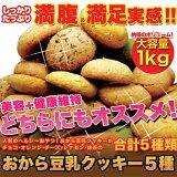 【送料無料】たっぷり増量!お徳用 おから豆乳クッキー 1kg(250g×4袋)【豆乳おからクッキー 割れクッキー 無選別クッキー お試し スイーツ】【のし・包装不可】