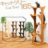 1年保証 キャットツリー 据え置き 全高 165cm シニア 運動不足 猫ちゃん 省スペース 木製 スリム キャットツリー おしゃれ 安定 階段 猫 ペット 爪とぎ つめとぎ ボード すべり止め付き棚 ●[送料無料][あす楽]