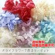【送料無料・福袋】ドライフラワー7色カラーセット・合計25g【他商品同梱不可】*