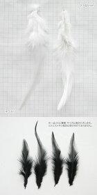 [1本売り]リアルフェザー・羽根・鳥の羽・先長形(全3色)