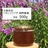 【500g古都奈良のニホンミツバチの蜂蜜500g】日本蜜蜂【国産】はちみつ【1年熟成】