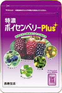 特濃ボイセンベリーPlus 【20種の植物由来の健康成分を配合】~メール便なら送料無料~1袋 約1ヶ月分(31粒)