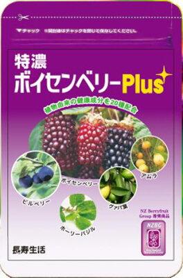 特濃ボイセンベリーPlus 【20種の植物由来の健康成分を配合】〜メール便なら送料無料〜1袋 約1ヶ月分(31粒)