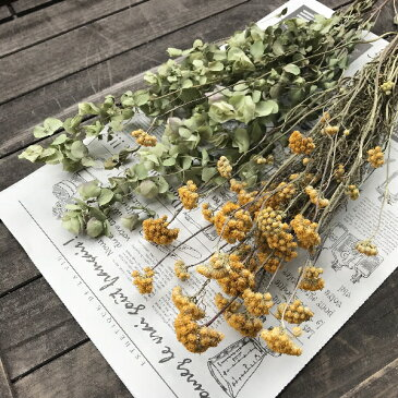 ローナスととオレガノケントビューティーの花束