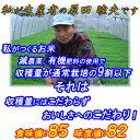 8c2467bcd8f9 平成21年産 福井県産こしひかり(コシヒカリ)☆新米☆ 5kg×1袋【お米】